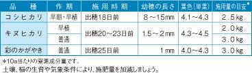 穂肥施用時期の目安0701
