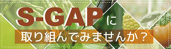 S-GAP