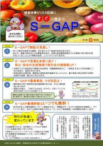 S-GAP チラシ