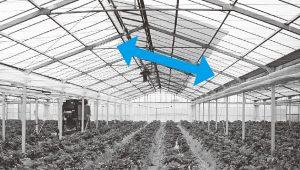 遮光事例1 連棟ハウス(南北畝)西側の屋根に遮光資材を載せた例