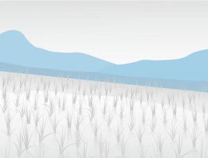 営農イメージイラスト