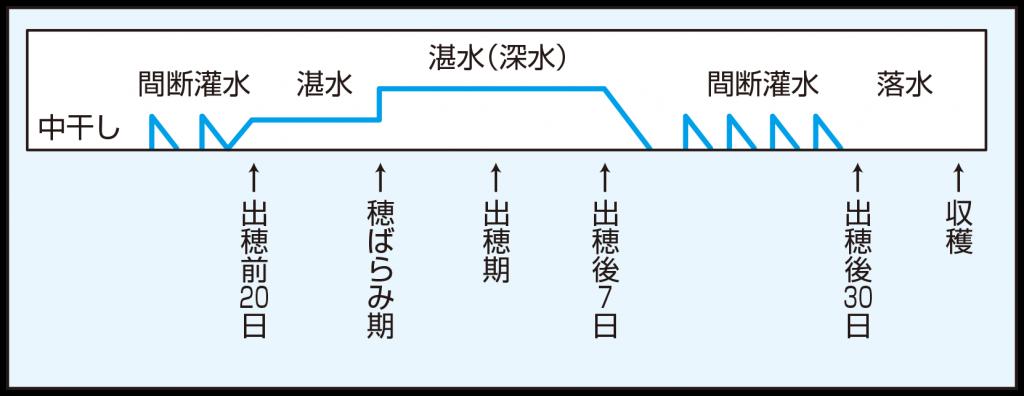 202007einou_zu1